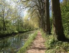 Canal de Berry à vélo : « Un projet incontournable pour le développement du territoire »