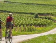 Plan national vélo : les Départements et Régions cyclables repartent à l'offensive