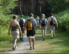 Randonnée pédestre des Cardeux à AUBIGNY sur Nère, le samedi 08 juillet